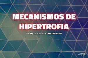 Os mecanismos de hipertrofia muscular - guia completo